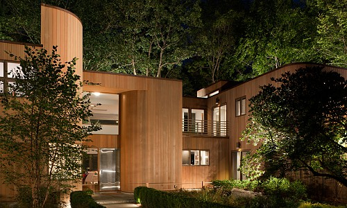 Wooded Contemporary House